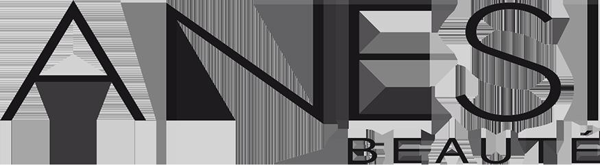Anesi logo